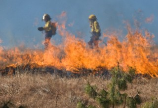 Wildfire Season Off to a Raging Start